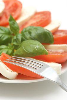 Free Fresh Mozzarella Royalty Free Stock Images - 5092219