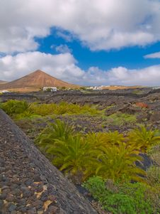 Lanscape Of Lanzarote Island Stock Images