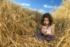 Free Little Girl In A Wheat Field Royalty Free Stock Image - 5096276