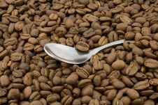 Free Coffee Beans And Spoon Stock Images - 5096684