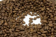 Free Coffee Beans Stock Images - 5096714