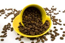 Free Cup With Beans Royalty Free Stock Photos - 5096768
