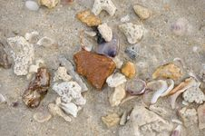 Free Sea Sand And Stones Stock Photos - 5098733