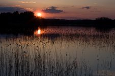 Free Sunset By The Rushy Lake Stock Photography - 5099172