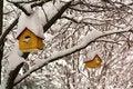 Free Birdhouses In The Snow Stock Image - 518341