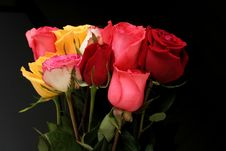 Free Bunch Of Roses Stock Images - 511614