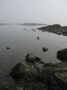 Free Foggy Beach Stock Image - 511701