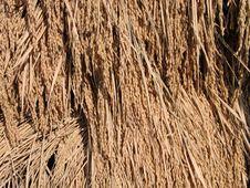 Free Rice Stack Detail Royalty Free Stock Image - 512606