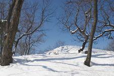 Free Sky And Snow Stock Image - 513721