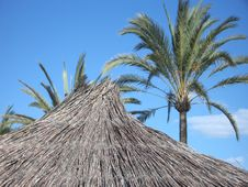 Free Beach Umbrella Stock Photo - 515990