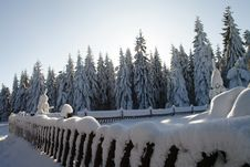 Free Snowcapped Fence Stock Photography - 516672