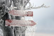 Free Frozen Signpost Stock Photos - 516783