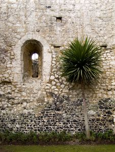 Free Palm And Old Castle Stock Photo - 518220