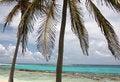 Free Tropic Scene Stock Photography - 5102002