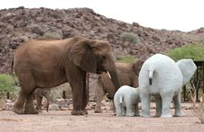 Free Desert Elephants Royalty Free Stock Images - 5103229