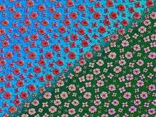 Free Flowers, Petals, Stock Photo - 5104340