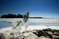 Free Glasses With Ice Royalty Free Stock Photo - 5105705
