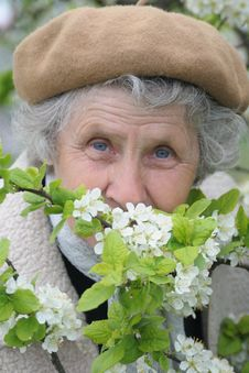 Free Granny Smells White Flowers Stock Image - 5107491