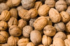 Free Walnuts Royalty Free Stock Photography - 5108267