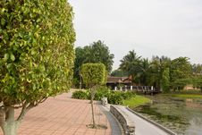 Free Water Garden Stock Photo - 5108380