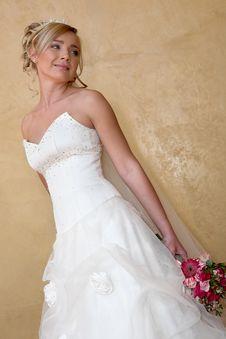 Free Wed Dress Royalty Free Stock Image - 5108846