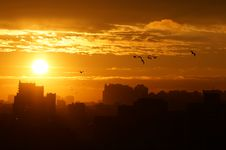 Sunrise Over The City, Clouds, Sun And Flying Birds Royalty Free Stock Image