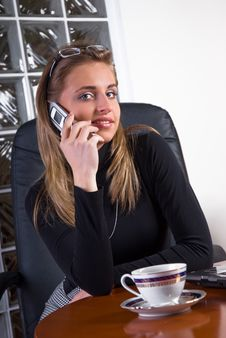 Free Businesswoman In An Office Royalty Free Stock Photo - 5110015