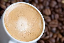 Free Cup Of Coffee Stock Photo - 5112060