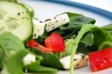 Free Fresh Green And Red Salad 1 Stock Photo - 5112390