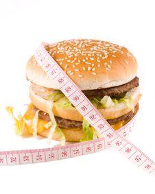 Free Hamburger Royalty Free Stock Photo - 5115385
