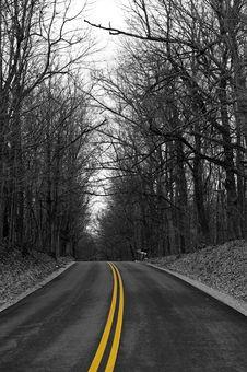 Free Yellow Road Royalty Free Stock Image - 5116936