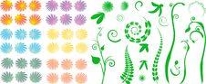 Free Designing Beautiful Flowers Stock Photos - 5117573