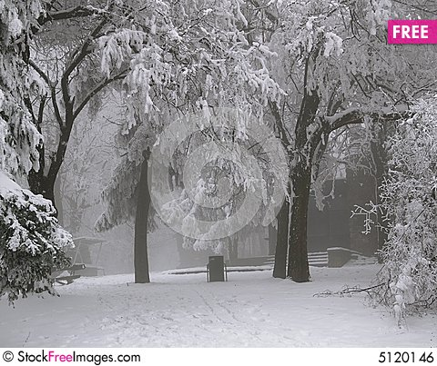 Free Winter Scene Royalty Free Stock Image - 5120146