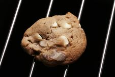 Free Cookie Biscuit With White Chocolate And Nuts Stock Photo - 5120870