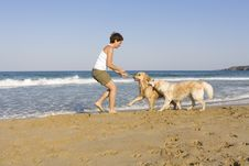 Free Yong Girl Playing With Her Dogs Stock Photography - 5122752