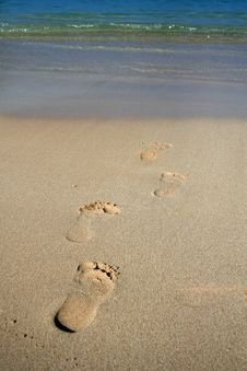 Free Footprints In The Sand Royalty Free Stock Photos - 5122908