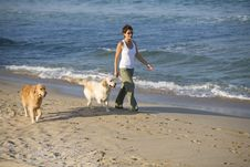 Free Girl Walking With Dogs Stock Photos - 5123073