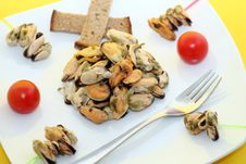 Free Mussels Royalty Free Stock Photography - 5124877