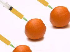 Free Oranges On White Background Stock Photography - 5124932