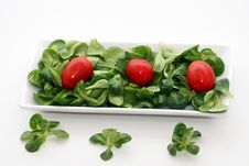 Free Salad Royalty Free Stock Images - 5126069