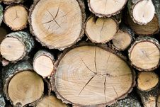 Free Wood Pile Logs Stock Photography - 5129082