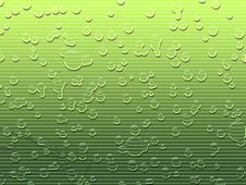 Free Water Droplets On Green Stock Photo - 5129200