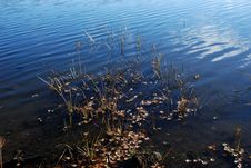 Free Water Stock Photo - 5129650