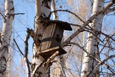 Free Birdhouse Stock Photo - 5129880