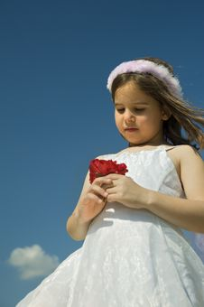 Girl Holding Red Roses Stock Photography