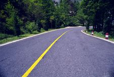 Free Road In Forest Stock Images - 5133104