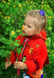 Free Little Girl Walks In The Spring On A Young Grass Royalty Free Stock Photography - 5133637