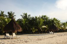 Free A Place In The Shade Stock Photography - 5133952