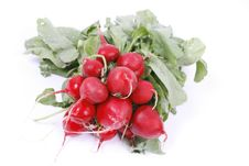 Free Fresh Radish Stock Photography - 5134762