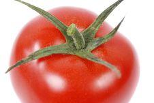 Free Red Tomato Stock Photos - 5134843